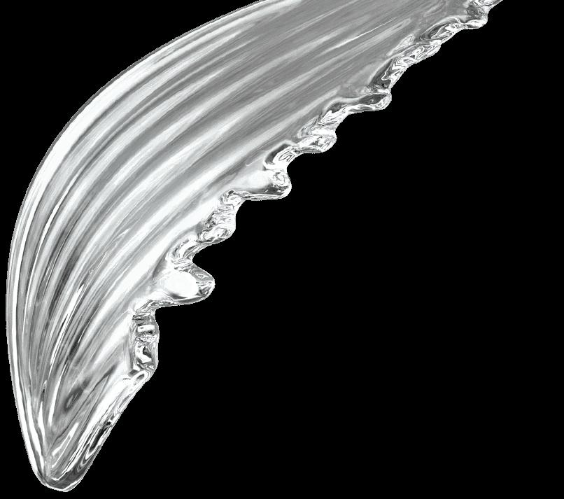 Wings Component Sans Souci Lighting